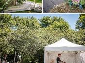 Cornish Tipi Wedding Photographer
