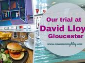 Trial David Lloyd Gloucester