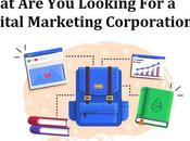 What Questions Digital Marketing Agency Singapore?
