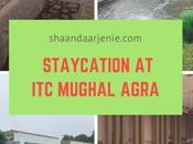 Staycation Mughal Agra
