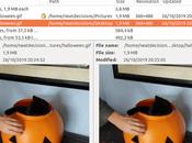 Detwinner Linux Edition 0.3.0