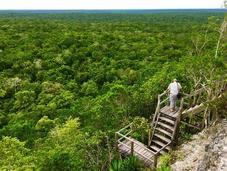 Maya Biosphere Watch Opposes Proposal Jungle Train Disney-Like Theme Park