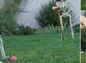 Decorate Your Lawn This Halloween?