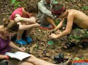 Frontier Staff Volunteers Cambodia Have Discovered Extended Range Narrow Mouthed Frog