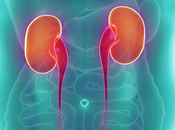 Glomerular Filtration Rate (GFR) Treatment Ayurveda