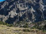 Hiking Tips Yeongsil Trail Mount Hallasan Jeju Island