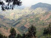 Watch: Gishwati Mukura, Rwanda's Newest National Park