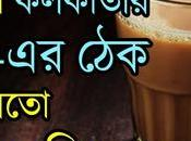 Amazing Stalls/Chai Cafe Kolkata (2019) চা-এর কলকাতা
