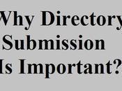 Directories List Aapke Blog Visitors Badhane Liye