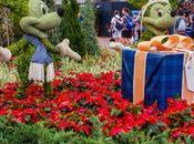 Pros Cons Visiting Disney World Christmas