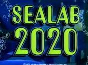 Seaing 2020
