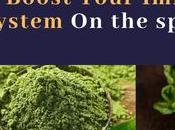 Amazing Foods, Spices Herbs That Reverse Disease