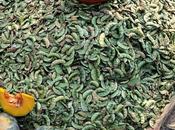 Shankranthi Sesame, Sugarcane Feasts Harvest