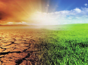 Net-Zero Challenge: Fast-Forward Decisive Climate Action