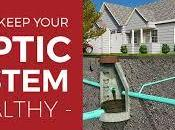 Signs Need Replace Your Septic Unit Home