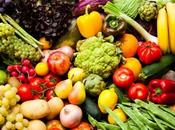 Four Tips Help Ensure Food Safety When Transporting Storing