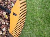 Simple 4-Step Fall Lawn Care Schedule