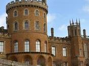 Snowdrops Belvoir Castle