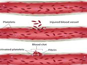 Treatment Afibrinogenemia Ayueveda