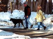 This Article About Bill Hillary Clinton Chappaqua, Where...