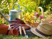Spring Gardening Tips Your Garden Ready Summer