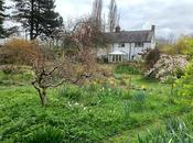 Help Support Closed Nurseries, Gardens Gardeners