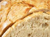 Rustic No-Knead Bread Recipe