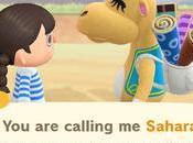 Animal Crossing Horizons: Saharah's First Visit Tarantula Island