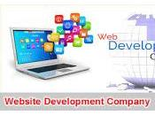 Website Development Company Have Group Professional Team Developers Growing Powerful
