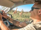 Self-Drive Safari Kruger National Park, South Africa (Detailed Guide)