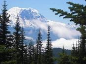 Best Mount Rainier Hiking Trails Every Adventurer Explore