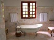 Essentials Upgrade Your Bathroom