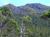 Picton Stenes Tarn Track