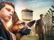 Shepherd: Hero (2019) Movie Review