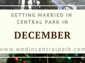 Getting Married Central Park December