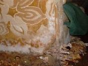 Repair Flood Damage Prevent Mold Your House