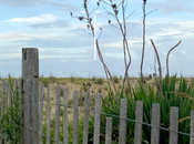 Renting Airbnb Dewey Beach, Delaware