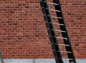 Best Extension Ladders 2020 Reviews Guide