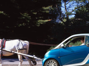 Just Neigh: Modern Horse Drawn Carriages