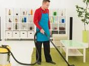 Professional Carpet Cleaners Residential Commercial Carpets