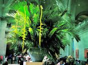Field Trip: Metropolitan Museum
