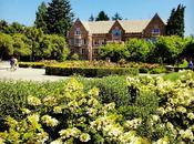 University Washington