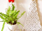 Christmas: Cheer, Celebration, Trees, Tinsels Trinkets