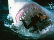 Shark Attack Megalodon (2002) Movie Review