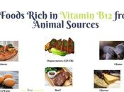 Foods Rich Vitamin from Animal Sources