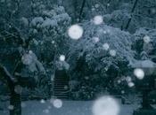 Settling Into Winter