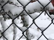 Grace-filled Snow