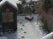 Snow, Snow!