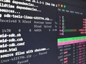 Best Linux Distributions Laptop 2021
