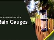 Measure Rain with Gauges